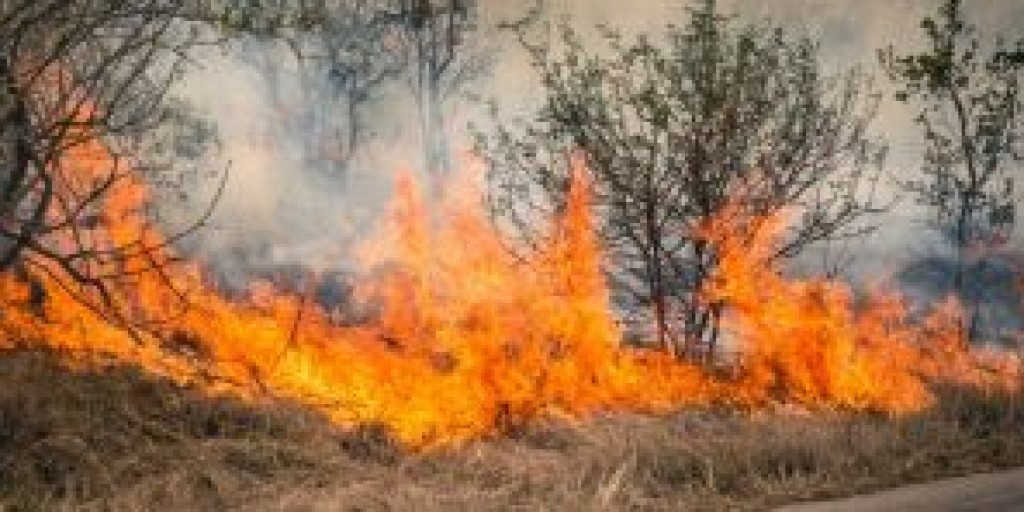 The Impact Of Wildfires On Personal Finances